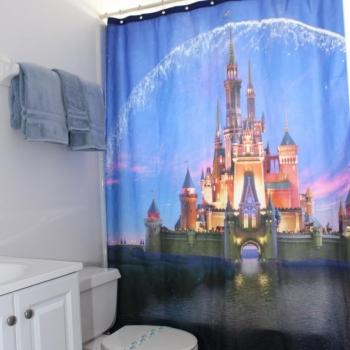 Second Bathroom has a ShowerTub Combo